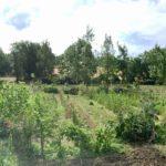 Le jardin du restaurant de Bernard Gisquet à Cestayrols dans le Tarn