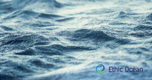 Ethic Ocean et des restaurateurs engagés
